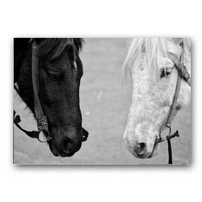 Toile Cheval Noir et Blanc