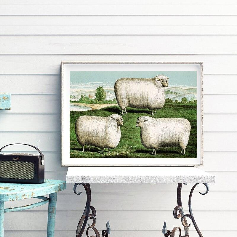 Tableau Mouton