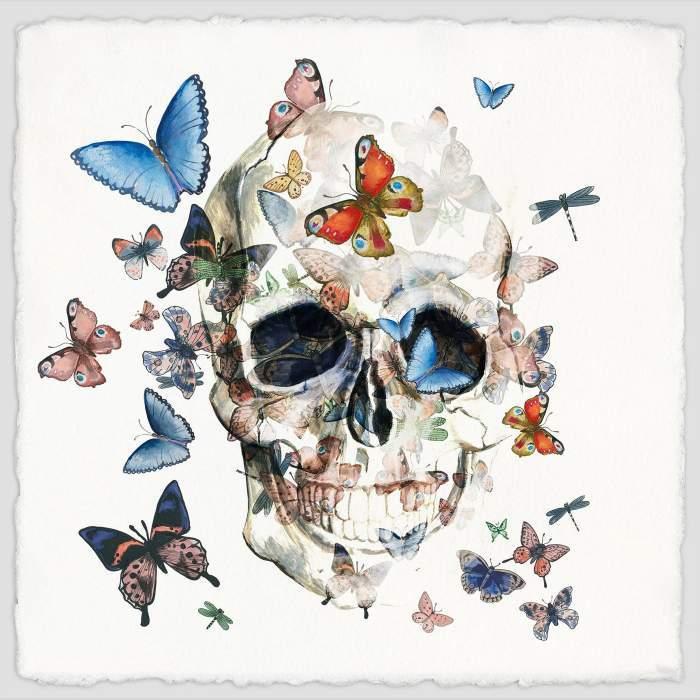 Tableau Tête de Mort Papillon