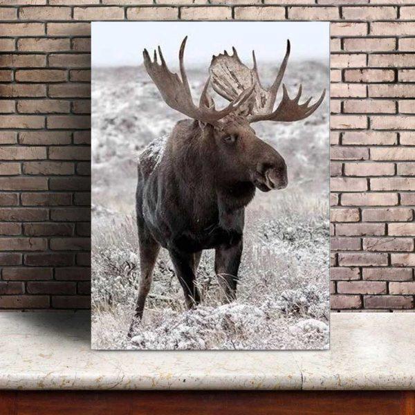 Poster Caribou