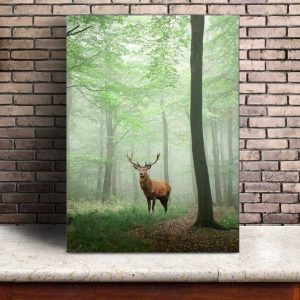 Toile Cerf Foret