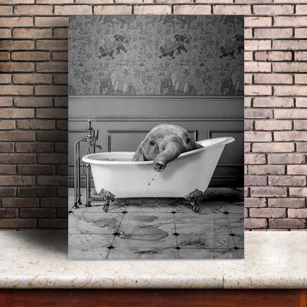 Poster Éléphant Humour