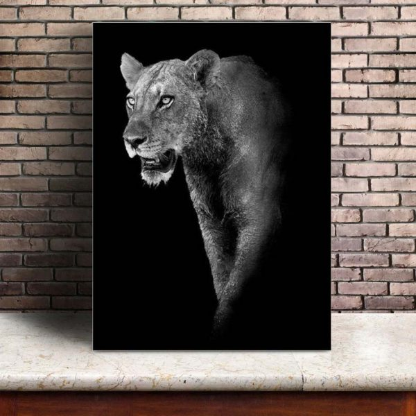 Poster Photo Animaux