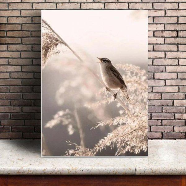 Poster Mural Oiseaux