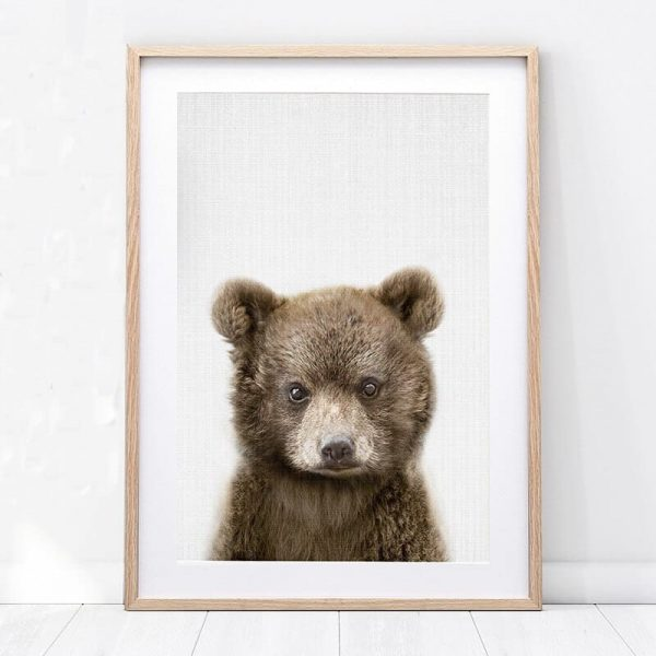 Poster Petit Ours Brun